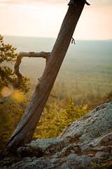 holdon (torivonglory) Tags: lapland lappland lappi landscape landschaft finland finnland midsummer midnightsun summer sommer sonnenuntergang sunset sunny nationalpark alivingdog canon canon6d 6d