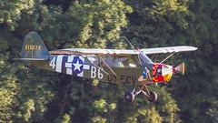 1942 USAAF Piper L-4A (J3C-65D) Grasshopper 42-15272/OY-ECV 'B6-4' 'Mistress' (Hugh Dodson) Tags: flyin hahnweide ott16 oldtimermeeting2016 1942 usaaf piperl4a j3c65d grasshopper 4215272 oyecv b64 mistress