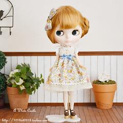 Blythe Doll Happy Memories