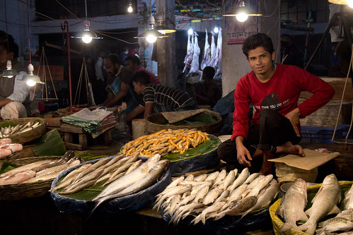 Fish market in Khulna, Bangladesh. Photo by Samuel Stacey, 2012