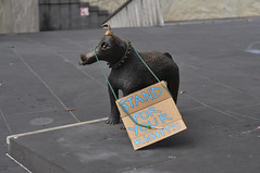 The Protesters Come & Go, But I Remain (Smith-Bob) Tags: street dog streetart statue bronze humorous candid protest melbourne bronzestatue occupy occupymelbourne standforyourrights
