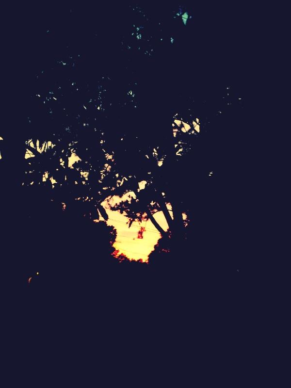 2012-06-053.jpg_effected.jpg