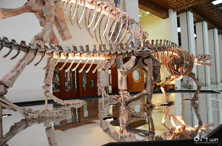 地球最古老的恐龍展01.jpg