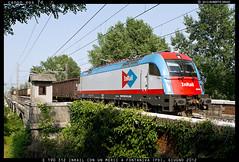 "font 3 (Roberto Drigo) Tags: italy photos merci stock siemens di locomotive fs vicenza treni ferrovie rfi ""roberto ""foto ""linea merci"" inrail ""linee treni"" ""treni ferroviarie"" drigo"" ""e190 312"" treviso"""