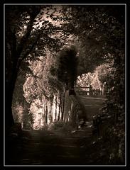 Little Bolehill (philwirks) Tags: green public derbyshire picnik myfavs prismatic luminosity philrichards wirksworth show08 flickrinfullcolor unlimitedphotos ipiccy