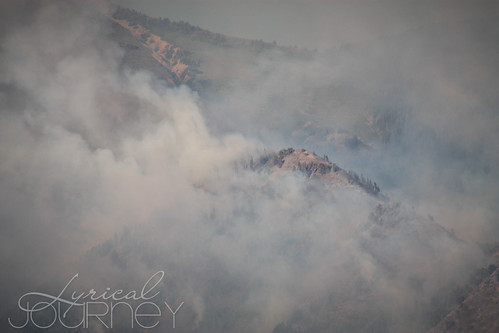 Alpine Quail Fire (18 of 33)