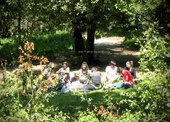 . (zioWoody) Tags: florence firenze boboli giardino herbe giardini colazione déjeuner giardinodiboboli ledéjeunersurlherbe colazionesullerba
