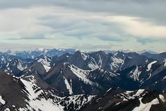 SDIM7789 East Glacier Park from Mt Wright (AlbertaScrambler) Tags: peak glacier glaciernationalpark glacierpark gnp dividemountain chiefmountain risingwolfmountain flinsch mountwright flinschpeak whitecalfmountain sherburnepoint albertascrambler