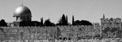 Jerusalem (Ilan Ejzykowicz) Tags: domeoftherock  jeruzalem gerusalemme jerusaln  felsendom   dmedurocher kuds ierusalim herusalem quddus cupoladellaroccia  cpuladelaroca  kubbetssahra kopuanaskale jeruzslem  jeruzalm  xerusaln klippehelligdommen  cpuladarocha jeruzal klippedomen     qubbatassajra      coupoledurocher   cherusalem  herusal qds  jeruusalemm jeruzalim iarsailim  yrusalem  jerozolma  yerusalemu orelm       skalndm  cupolastncii skalndm klippdomen