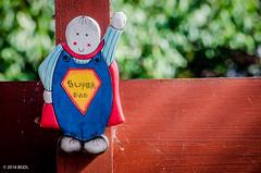 Well, Of Course!! (BGDL) Tags: fence garden carving primarycolours superdad weeklytheme afsnikkor55200mm1456g nikond7000 bgdl flickrlounge lightroomcc