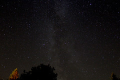 Milkey Way (Venvierra @ GothZILLA Photography) Tags: gothzillaphotography canon 600d canon600d eos canoneos canoneos600d stars starscape nightsky night starrynight weather clearskies sky starrysky starry astrophotography trees powhill derwent reservoirmilky way