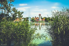 (Rhia.photos) Tags: summer summertime lake tower reed reeds green blue sky colours clouds tree nature outdoor hungary gyopros gyoprosfrd oroshza image shot photo photograph photography