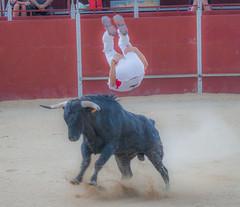 #DePaseoConLarri #Flickr - -8735 (Jose Asensio Larrinaga (Larri) Larri1276) Tags: 2016 concurso recortadores arabalava amurrio araba lava basquecountry euskalherria