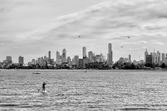 Monochrome Paddle (evilDink) Tags: standuppaddle victoria nature australia edited blackwhite mirrorless fujifilm clouds beach niksoftware cityskyline xf56mmf12 ocean nikcollectionbygoogle water viveza silverefexpro20 stkilda dfine20 xt1