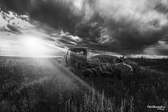 Drive-In - BW (Pat Kavanagh) Tags: drivein prairies prairie western west canada alberta sunrise sunset landscape patrickkavanaghca heritage rusted rusting abandoned blackandwhite taber