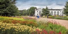 A stunning herbaceous border beside the Braod Walk at Kew Gardens in London. The 18th century Orangery in the background, (Anguskirk) Tags: importedkeywordtags broadwalk flowerborder flowers greatbritain kewgardens london orangery people royalbotanicgardens uk