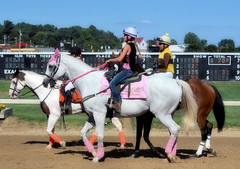 2016-08-28 (42) r7 pony people in pink (JLeeFleenor) Tags: photos photography md maryland marylandracing marylandhorseracing timonium statefair outside outdoors ponypeople leadrider leadriders grey gray pink jockey   jinete  dokej jocheu  jquei okej kilparatsastaja rennreiter fantino    jokey ngi horses thoroughbreds equine equestrian cheval cavalo cavallo cavall caballo pferd paard perd hevonen hest hestur cal kon konj beygir capall ceffyl cuddy yarraman faras alogo soos kuda uma pfeerd koin    hst     ko