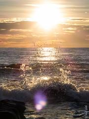 P1140554 (Pursuedbybear) Tags: alexandraheadland sunshinecoast beach sunrise waves