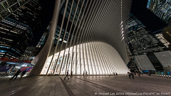 Calatrava Transportation Hub (DSC08628) (Michael.Lee.Pics.NYC) Tags: newyork wtc worldtradecenter transportationhub calatrava oculus architecture night fisheye sony a7rm2 rokinon12mmf28