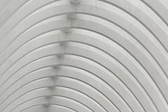 White arches (Jan van der Wolf) Tags: map15467v white wit station bows bow bogen architecture architectuur modernarchitecture liege herhaling repetition monochrome monochroom ligeguillemins gareligeguillemins luik tgvstation railwaystation