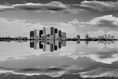 Reflections of Tampa, Florida, U.S.A in monochrome. (Jorge Marco Molina) Tags: tampabay tampa hillsboroughcounty urban downtown cityskyline skyline centralbusinessdistrict density sunshinestate reflectionsinwater cosmopolitan metropolitanarea metropolis metro city southerncity cityscape