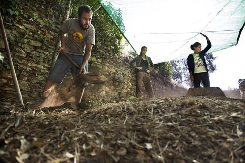 Exhumación As Covas (Lugo) (3)