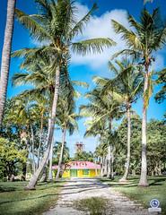 Gardel (sam97118) Tags: coconuts fwi guadeloupe antilles sugar sky maison