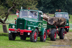IMGL6612_Bedfordshire Steam & Country Fayre 2016 (GRAHAM CHRIMES) Tags: bedfordshiresteamcountryfayre2016 bedfordshiresteamrally 2016 bedford bedfordshire oldwarden shuttleworth bseps bsepsrally steam steamrally steamfair showground steamengine show steamenginerally traction transport tractionengine tractionenginerally heritage historic photography photos preservation photo classic bedfordshirerally wwwheritagephotoscouk vintage vehicle vehicles vintagevehiclerally rally restoration unipower hannibal timbertractor 1956 gar130k