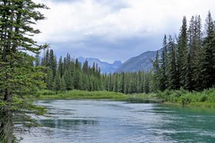The Bow River (Patricia Henschen) Tags: montane forest boreal mountain mountains clouds bowriver bow river banffnationalpark alberta canada parks parcs nationalpark rockies canadian northern rockymountains