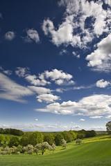 Clouds (frank-heinen-photographer) Tags: copyright nikon photographer natur pflanze wiese himmel wolken eifel lee nrw blau blume landschaft weite baum gruen fruehling obstbaum leefilter d700 afsnikkor2470mm128ged aapfel frankheinen frankheinen