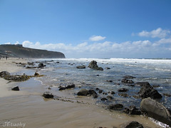 Strands Beach (jbtuohy) Tags: ocean california sea seascape beach nature strand outdoors coast natural pacific socal danapoint 2012 g11 coatline strandsbeach jbtuohy strandsvistapark