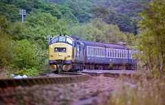 Along the Shore HR scan (Deepgreen2009) Tags: train scotland track diesel curves railway shore rails locomotive 37 fortwilliam growler mallaig locheil corpach westhighlandline