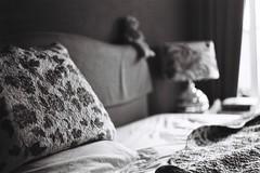 Les choses de la vie (VLBPhotography) Tags: blackandwhite france analog french domestic argentique exakta filmphotography fleetingmoments exaktavarexiia tasmafilm leschosesdelavie biotar58mm