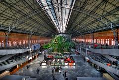 Spagna, Madrid, Estacion de Atocha (forastico) Tags: madrid estacion stazione spagna atocha d60 forastico nikonflickraward luckyorgood
