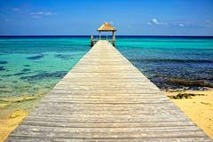 Caribbean paradise (hapePHOTOGRAPHIX) Tags: hapephotographix mexiko méxico mexico quintanaroo playadelcarmen beach strand playa meer sea türkis blau blue azul karibik caribbean caribe nordamerika northamerica américadelnorte sunshine sonnig urlaub holidays 484qtr 484mex fav10 dsplyys