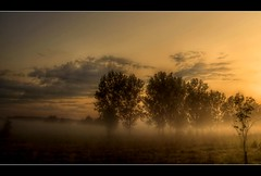 In the Evening. (Sam ) Tags: trees sunset sun fog clouds canon landscape evening yahoo flickr nebel sam wolken poland polska polen landschaft bume soe abendsonne pl lubsko gorzyn lubusz ruby22 rubyfrontpage