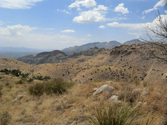 1206 Sabino Canyon East Ridge (c.miles) Tags: saddleback sabinocanyon santacatalinamountains bearcanyon thimblepeak blackettsridge point5001