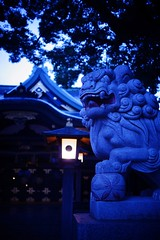 Bluemoment@Shinjyuku_Tokyo_010 (Ripple design) Tags: sony nostalgic 24mm sonnar bluemoment nex7