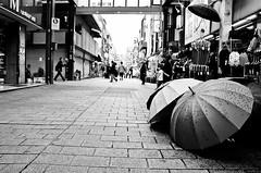 asakusa tokyo japan (Brendan  S) Tags: street travel blackandwhite bw japan umbrella tokyo spring flickr photos scene pedestrians april roll asakusa umbrellas 2012 brendanoshea asakusatokyojapan somuchtolearn herewecome tokyotourism livelearnlove rebelsab nikond7000 brendan photosofastreetsceneinasakusatokyo relaxedafternoonsceneintokyo brendansphotography brendanoseapple brendansapplephoto brendansapple brendanosheaphotography