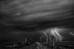 thunderstruck (Lino Petito) Tags: ed nikon winner lightning nikkor salento vr afs 2012 dx thunderbolt fulmini vincitore f3556g portocesareo cheva torrelapillo d300s 1685mm 1685mmf3556gedvrafsdxnikkor linopetito campionatodifotografia fotofucina