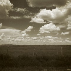 (Jon-F, themachine) Tags: sky usa nature field grass sepia clouds rural america canon countryside texas unitedstates tx country powershot northamerica    texan 2012 lonestarstate         jonfu sd1300