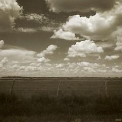 (Jon-Fū, the写真machine) Tags: sky usa nature field grass sepia clouds rural america canon countryside texas unitedstates tx country powershot northamerica 雲 自然 空 texan 2012 lonestarstate 美國 美国 そら 田舎 米国 セピア テキサス 得克萨斯 jonfu sd1300 セピア色