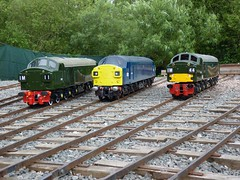 Echills_0143 (#mikecole#) Tags: uk miniature trains warwickshire class40 40143 d332 725inch kingsburypark d326 echillwoodrailway