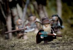 The chase begins (oldbullroarer) Tags: lego legography toyphotography thehobbit minifigs orcs radagast