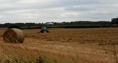 lt's begun... (Martha-Ann48) Tags: harvest field winter barley tractor bales rows stubble hogweed seed heads grass blue farmer