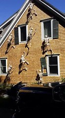 DIY For halloween (AllHalloweener) Tags: halloween halloweenday halloweenfun halloweeniscoming halloweencelebrations darkness dead witch evil diy diyproject decorations interior exterior