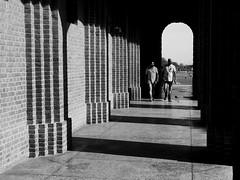 Perspective at FRI #2 (bhatnagarshruti26) Tags: monochrome blackandwhite light shadowplay architecture pillars column