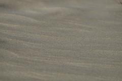 Emptiness (Goruna) Tags: sand beach emptiness texture summer goruna monochrome