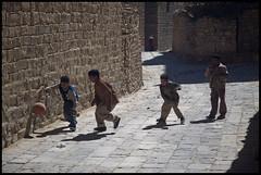 DSC_6399 (Sgaffo) Tags: yemen travelling 20072008 socotra