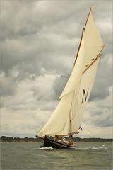 Panerai Classic Mikado under full sail (1 of 1) (honda1998rrw) Tags: cowes panerai yachts mikado canon1d3 canon24105mm